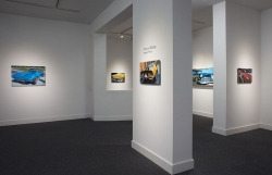 <strong>Cheryl Kelley</strong> Installation View